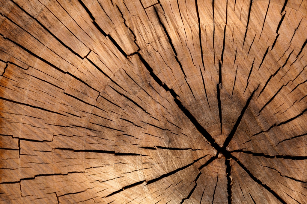 background-brown-circle-cut-40973
